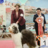 11 месяцев / month BEST IN SHOW junior