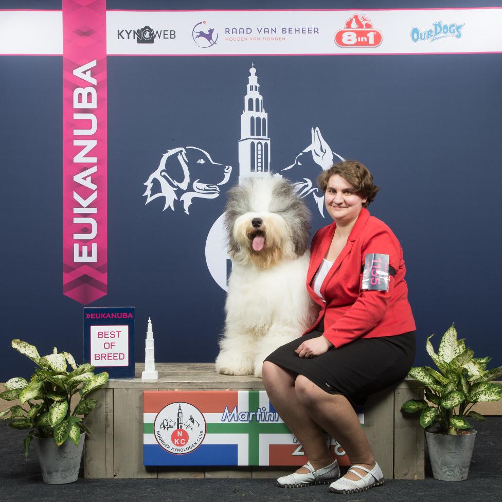 Международные выставки в Голландии
