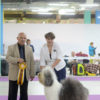 Misha aka Griland Throughout the World in intermediate class, BOB, BEST IN GROUP, BEST IN SHOW.