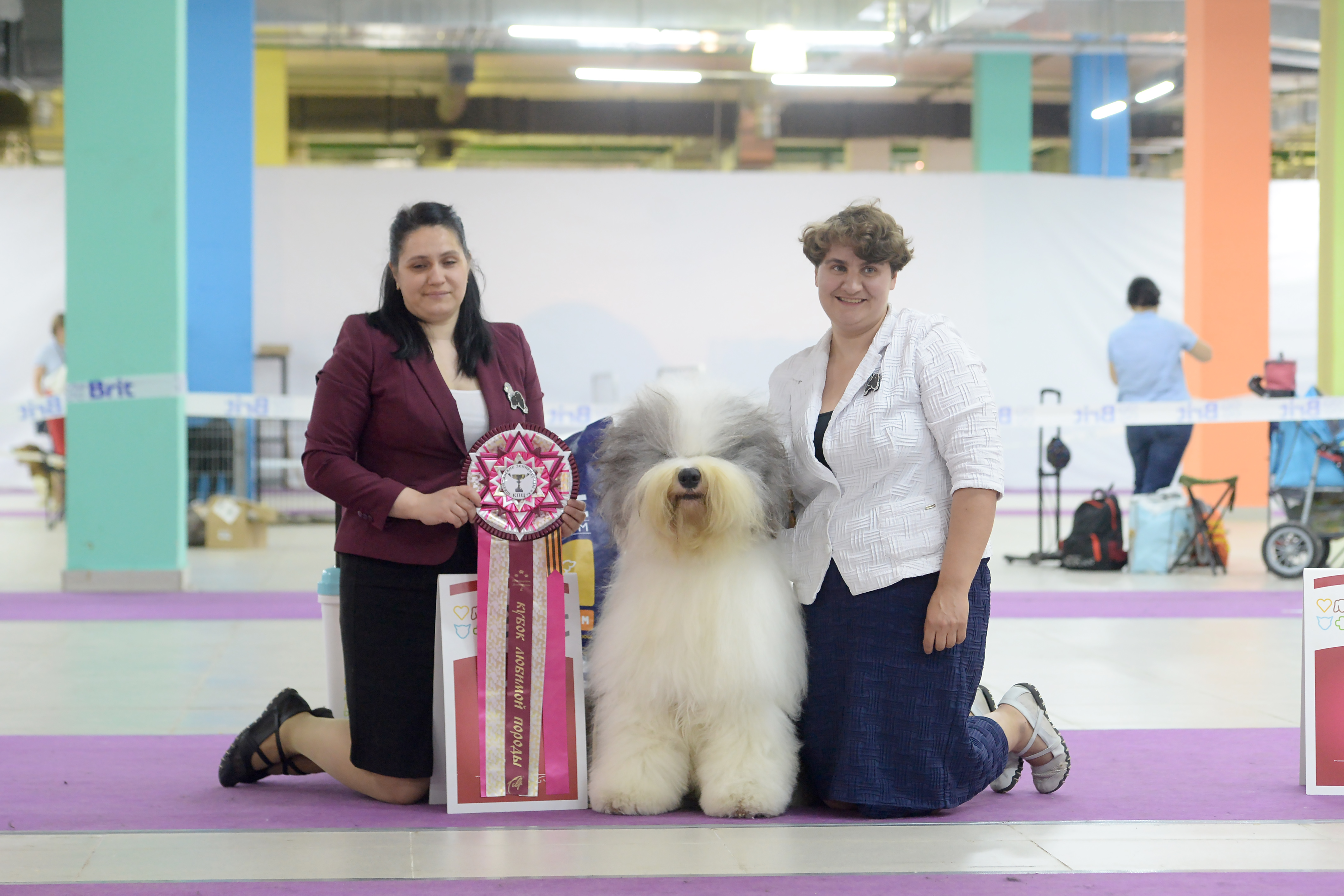 BEST IN SHOW #1 for Misha