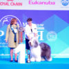 Misha aka Griland Throughout the World JUNIOR BEST IN SHOW in Eurasia 2018