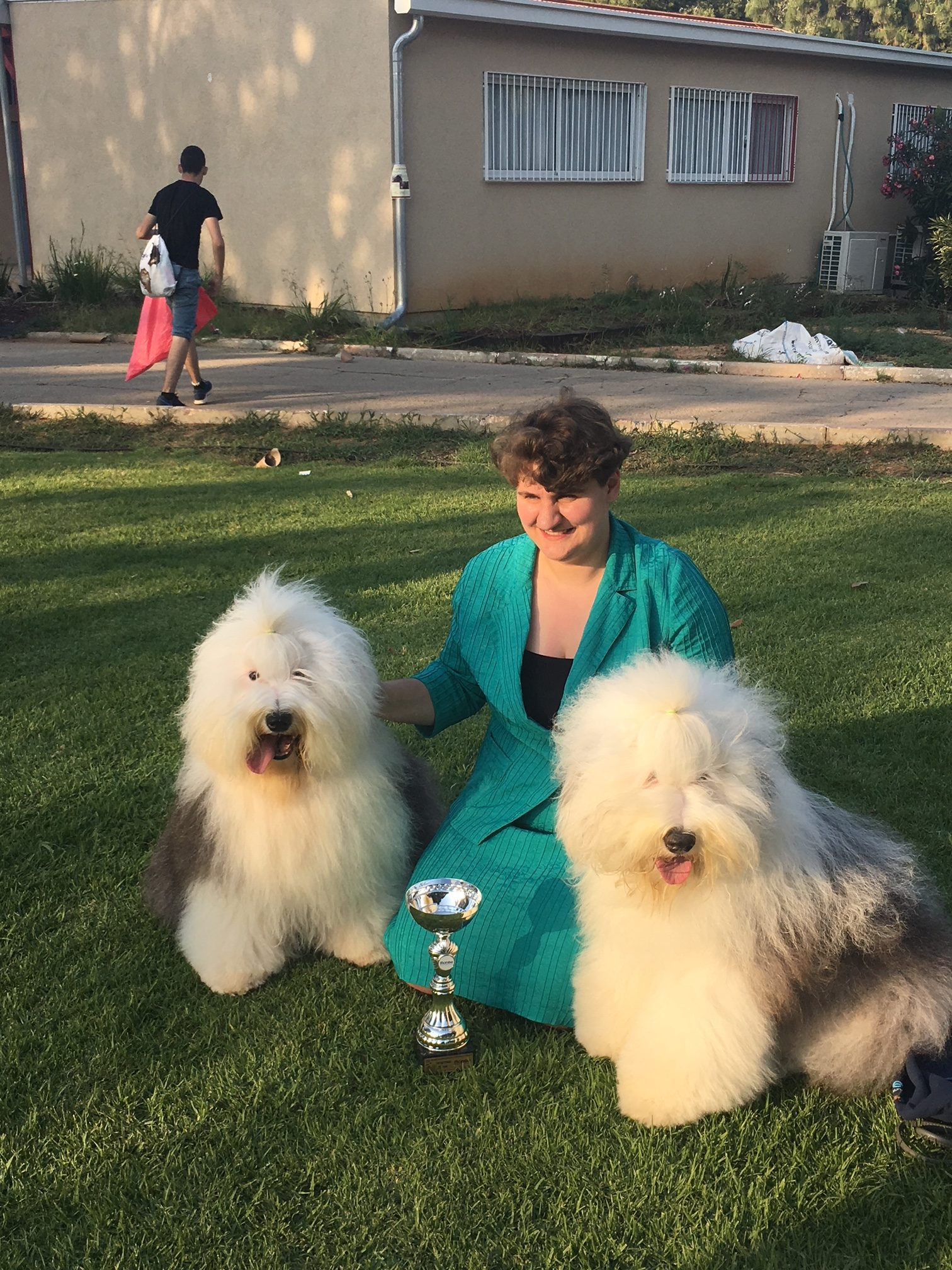 Dog show in Israel.