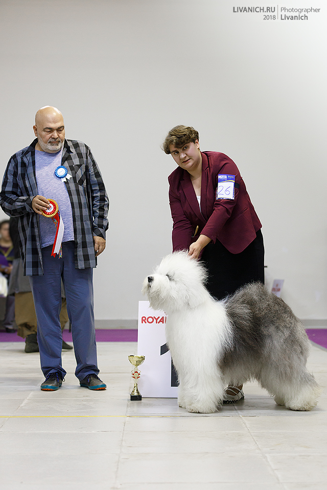 New Champion of Russia