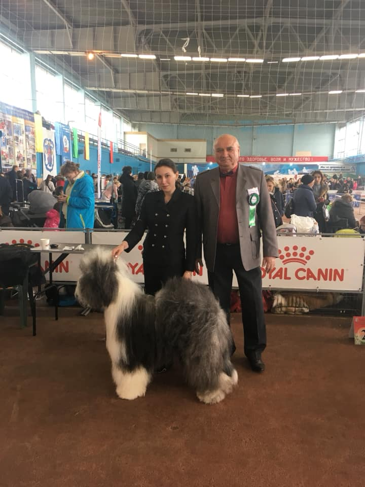 2*CACIB show in Belorussian, 2-3.03.2019