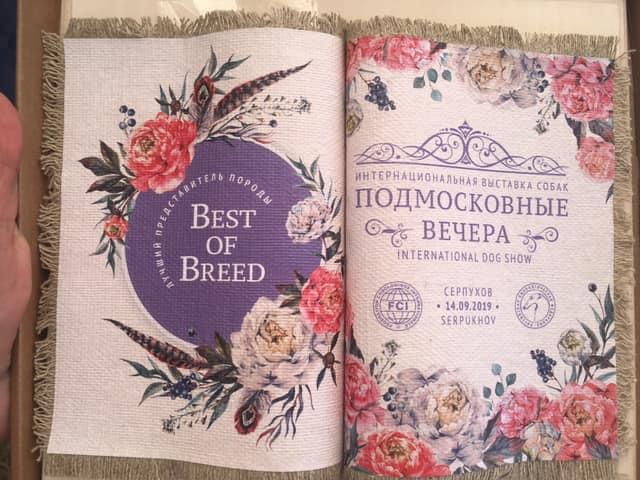 Выставка ранга CACIB в Серпухове, 14.09.2019