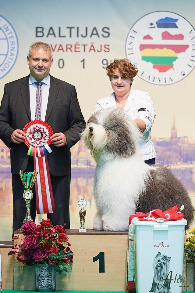 Балтик Виннер 2019, Рига-Латвия, 28/10/2019